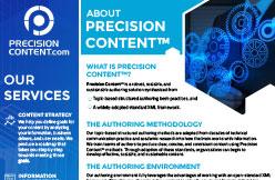 about-precision-content-pdf